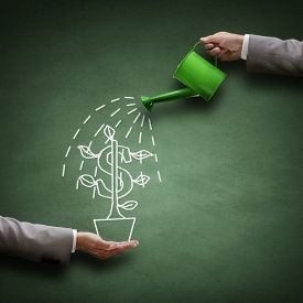 watering_can_money_tree_drawn_blackboard_concept_business_cg9p5874065c_th