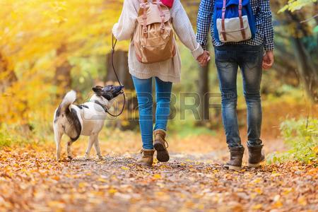 47410078-belle-jeune-couple-sur-une-promenade-dans-la-foret-d-automne